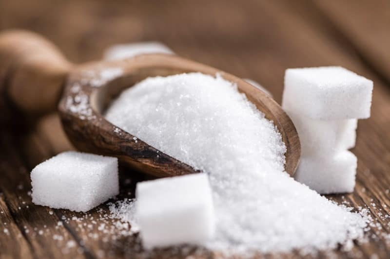glucides sucres sport