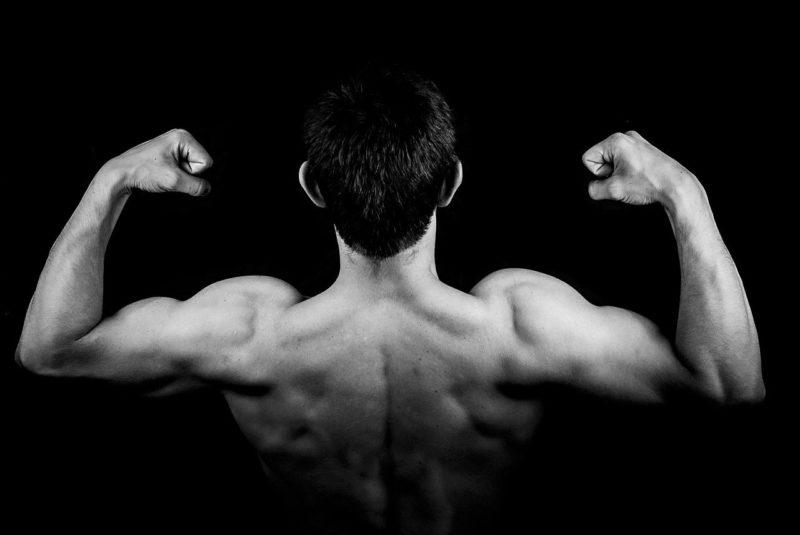 proteine musculation